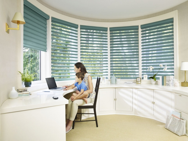 Hunter Douglas Pirouette Shades