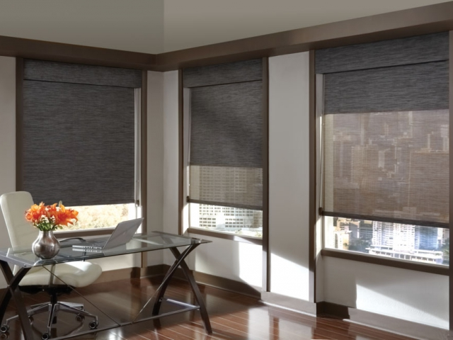 Hunter Douglas Screen/Roller Shades