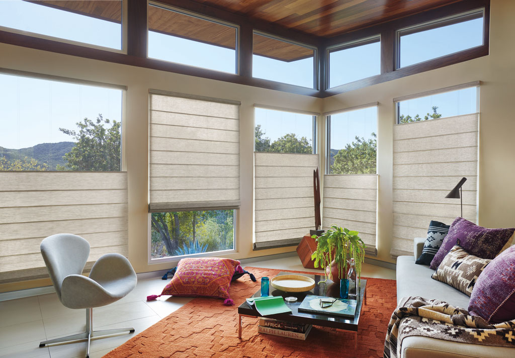 Hunter Douglas Roman Shades